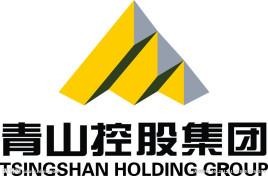 青山绿水控股集团有限公司在成立